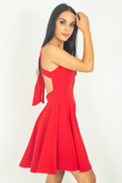 Red Knot Back Skater Dress
