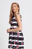 Black Striped Floral Skater Barbie Dress