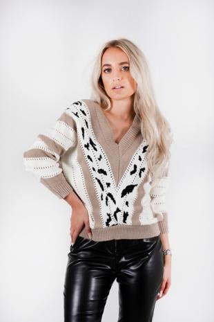 Beige Printed Knitted V Neck Jumper