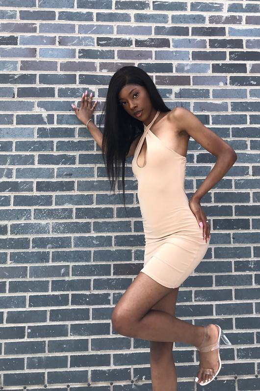 Stone Slinky Cross Front Backless Halter Mini Dress