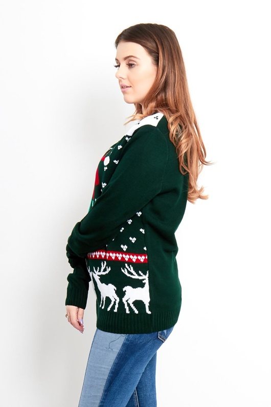 Green Grumpy Dog With Reindeer Pattern Christmas Jumper